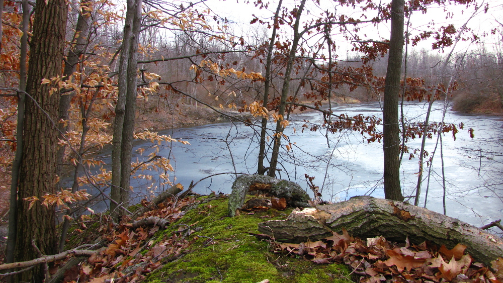 Ice Covered Pond